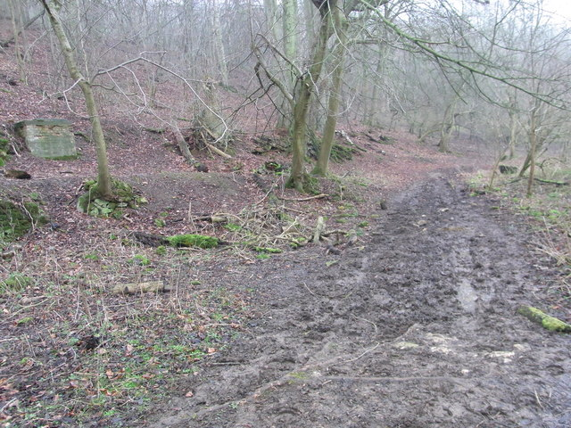 Badly 'poached' footpath much used by horseriders