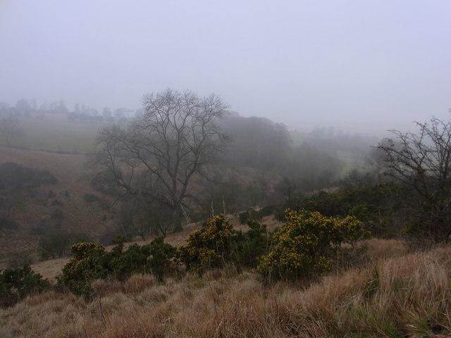 Misty morning near Shenberrow