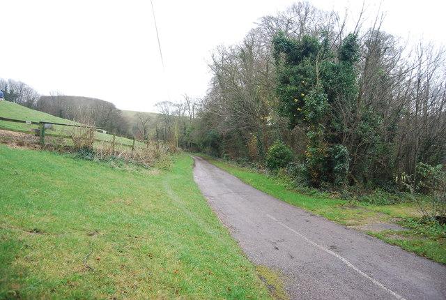 Lane in Littlebredy
