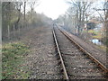 TL1697 : Nene Valley Railway at Orton Mere by Nigel Cox