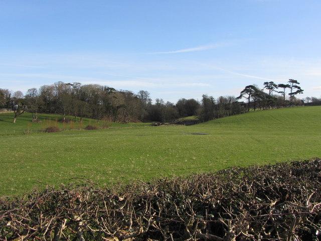 Fields near Llantwit Major