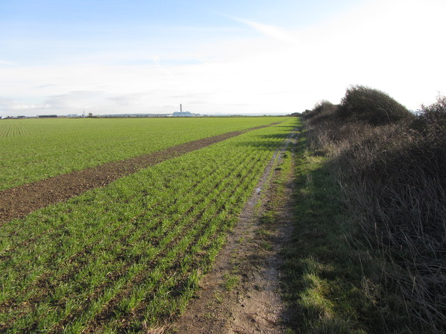 Cliff-top fields and path on Glamorgan coast