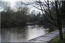 SJ8298 : The River Irwell by Salford University by Bill Boaden