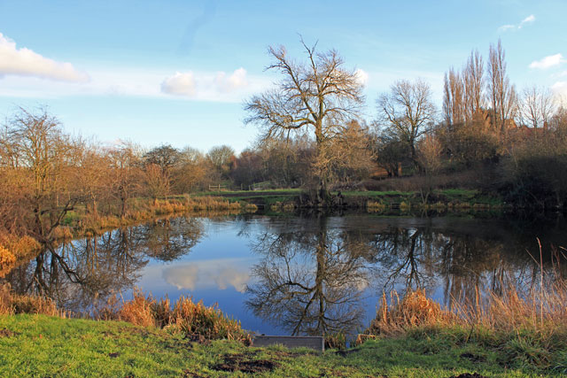 Tinker's Pond