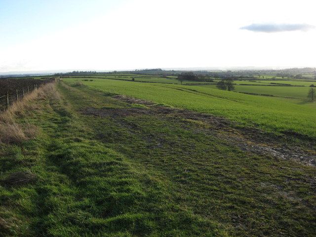 Near Sinnington