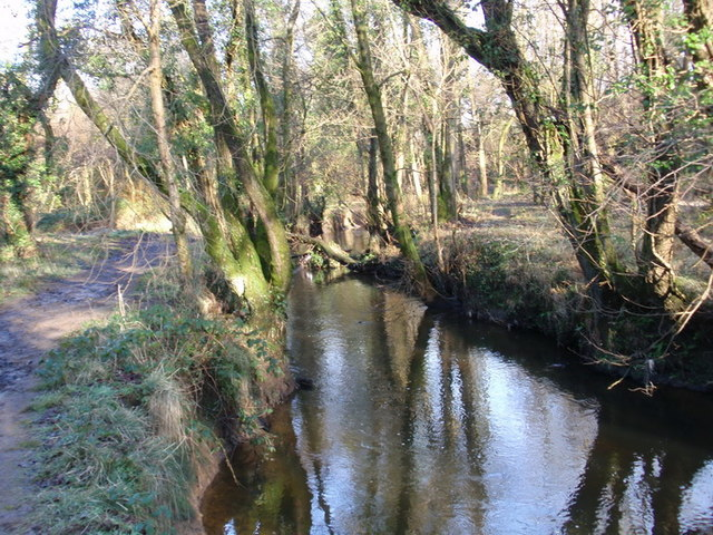 Llwybr glanafon Llan riverside path