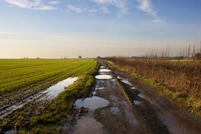 The track across Highfield Moss
