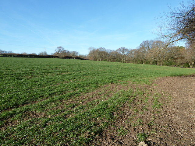 Arable land west of Springfield Farm