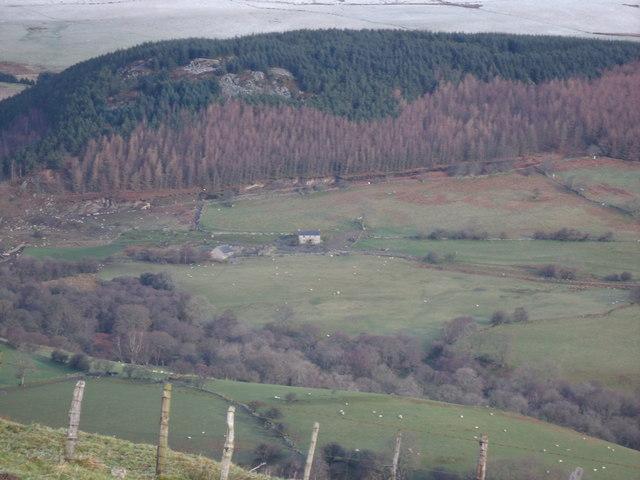Looking towards Gwern-Feifod from Glan-Hafon Track