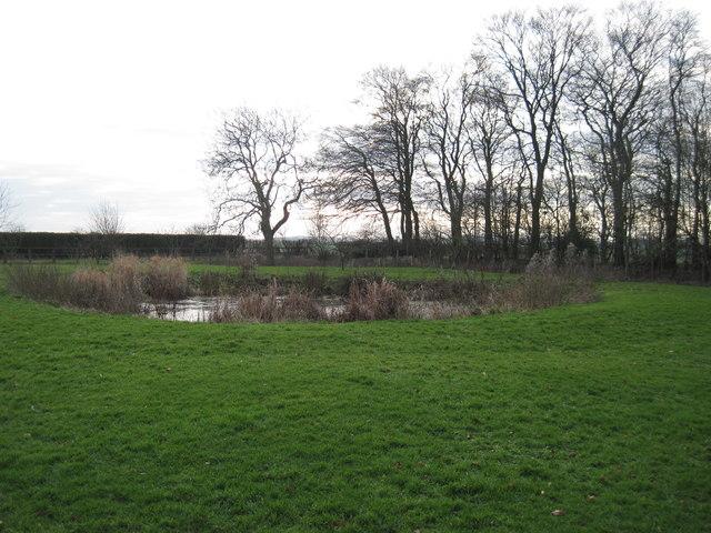 Pond  at  Pluckham  Farm