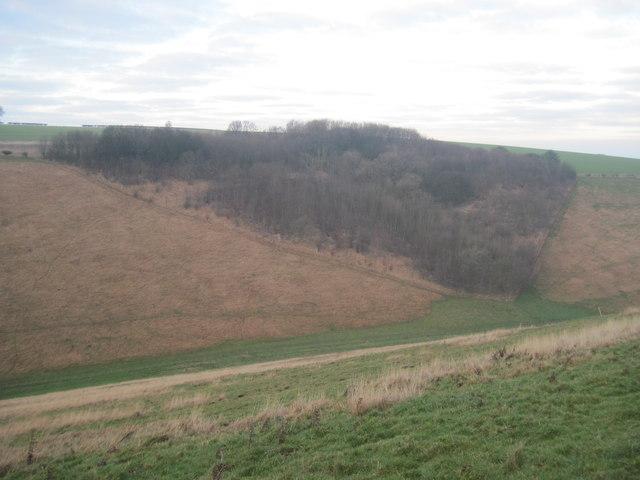 Horse  Dale  and  Horse  Dale  Plantation