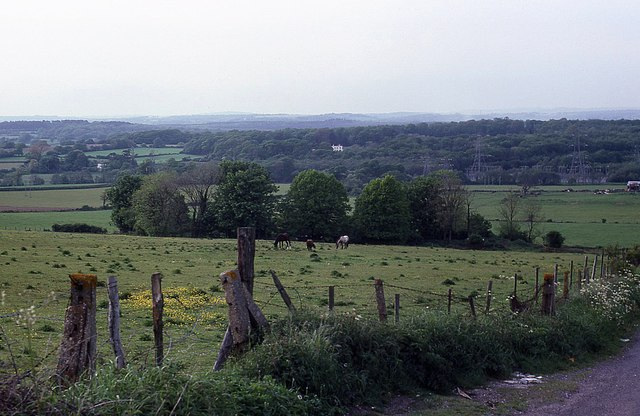 View from Widley Walk