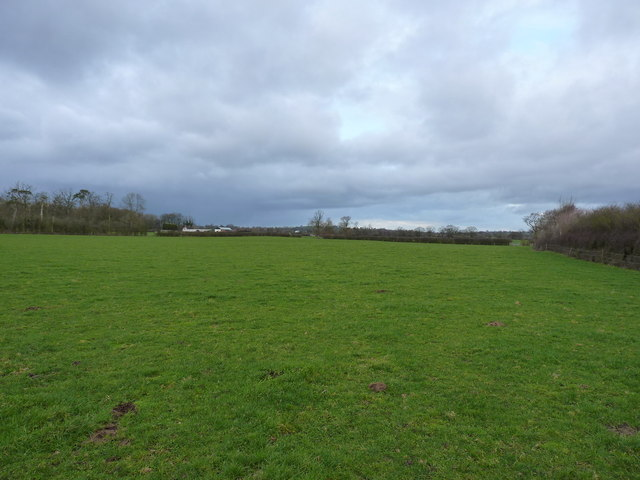 Bridleway across a field towards The Whitamoors