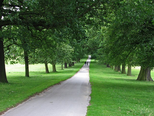 In Wollaton Park