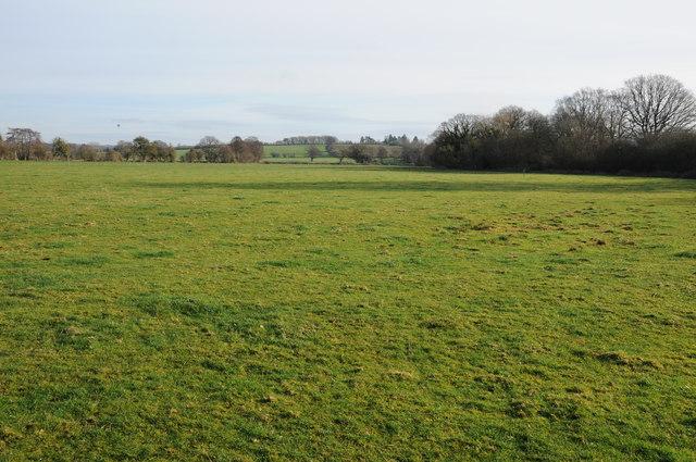 Farmland near Eardisley