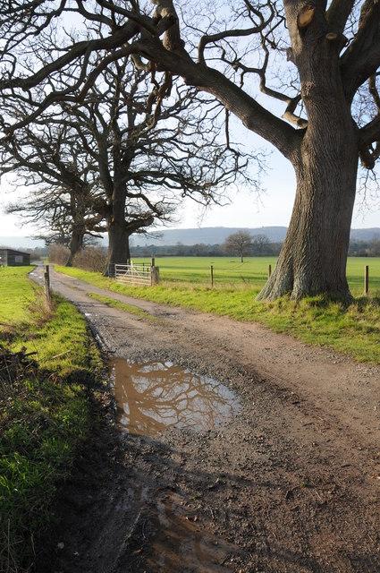 Bridleway to Monnington Walk