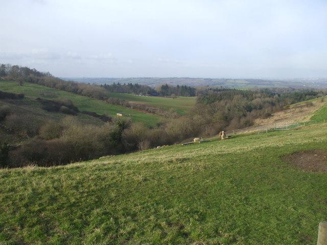 View over Hungerford Bottom, near Marksbury