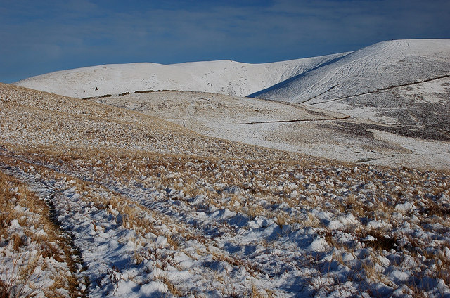 At the snowline, Milky Law