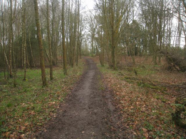 Path leaving Sandford Wood