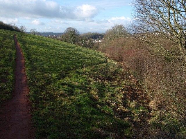Field and trees, Watcombe
