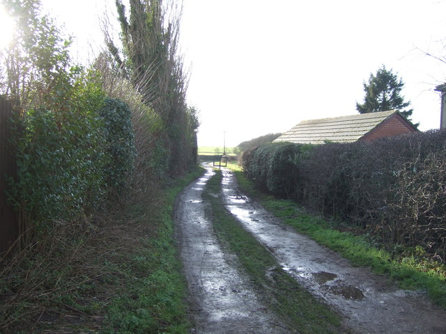 Bog Lane (track)
