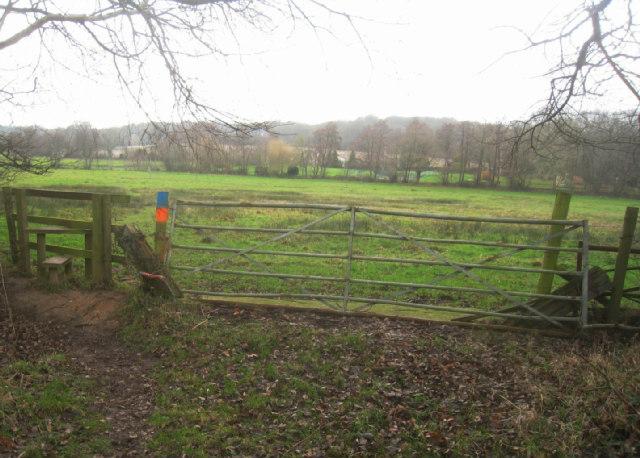 Sandford Wood / Frith Common