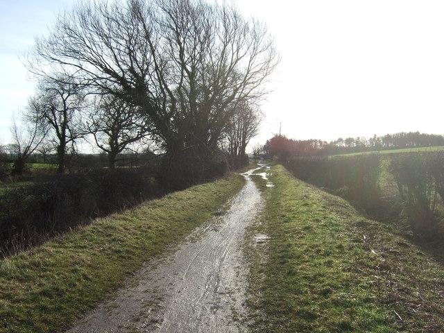 Bridleway towards Barnbow Common