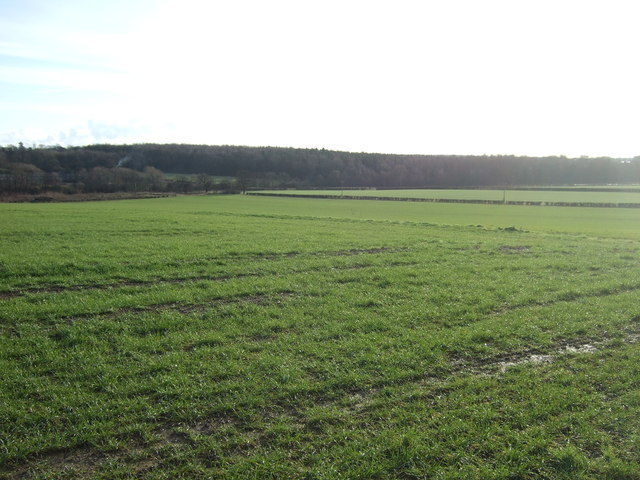 Farmland off Long Lane