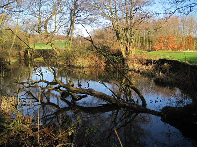 Pond, Cronton Lane
