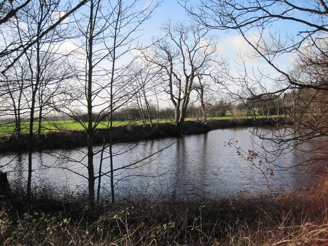 Pond adjacent to Manor Farm