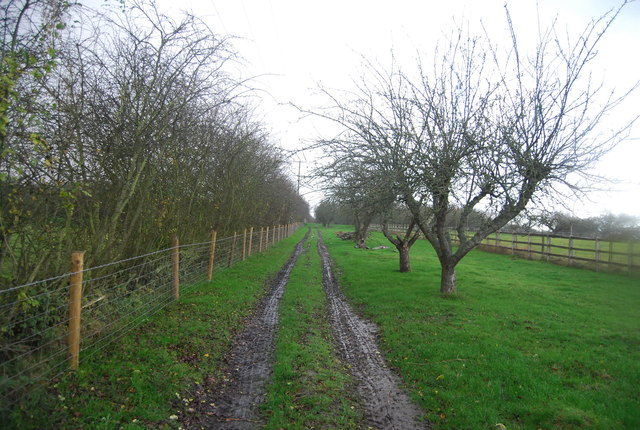 Footpath west from Loose