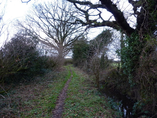 Bridleway towards Home Farm