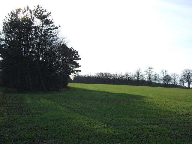 Farmland off the A64