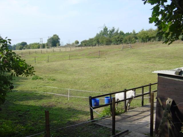 Paddocks, Castle Gresley