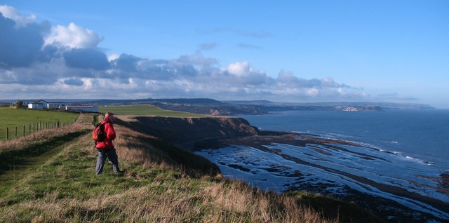 On Gristhorpe Cliff