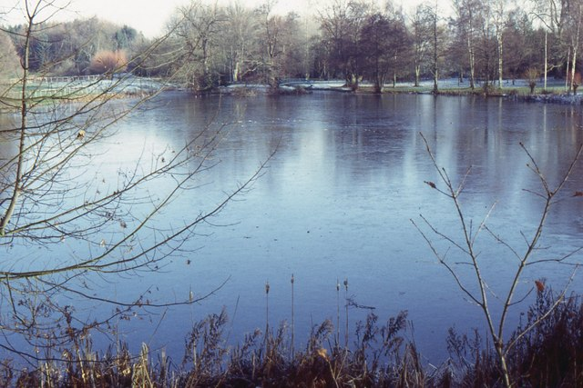 Swan Pool, Shobdon Park