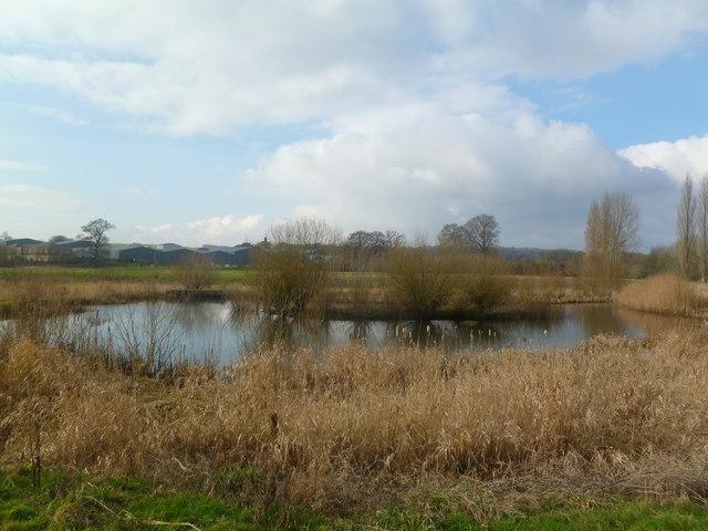 Blandford St Mary, pond