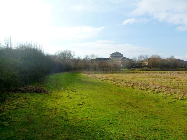 Blandford St Mary, path