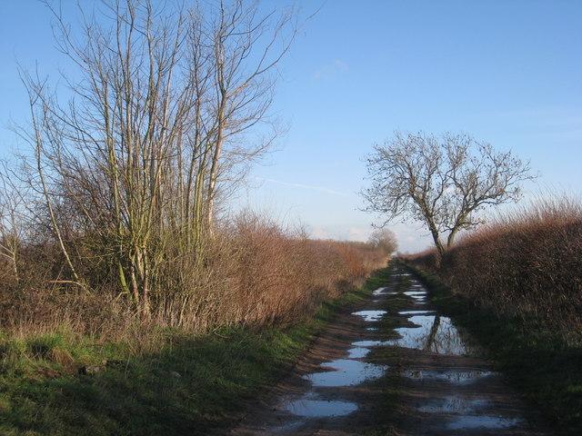 Eastwood Lane