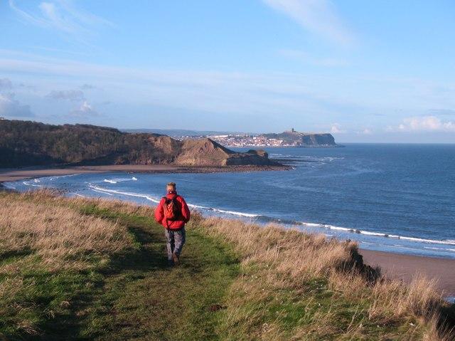 Clifftop path, Cayton Bay