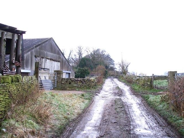 Back Lane, Shelley
