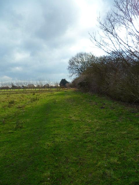 Field path near Rookery Farm