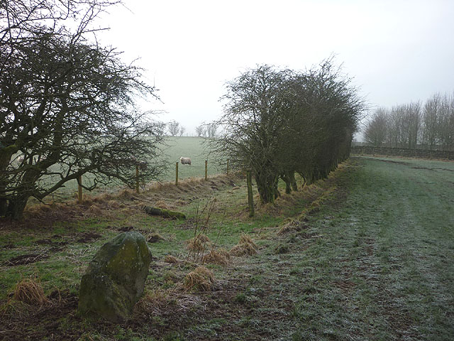 Track by the A686 near Melmerby