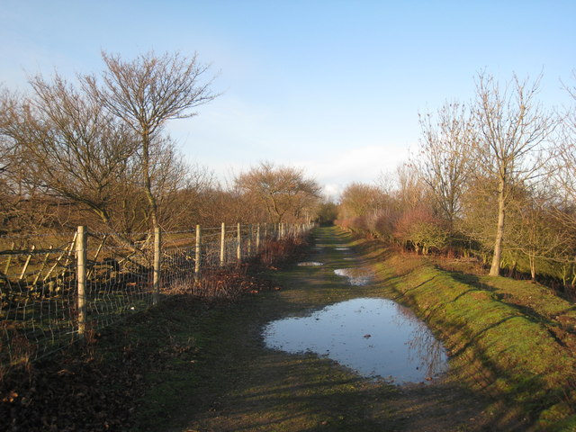 Rugged Butts Lane