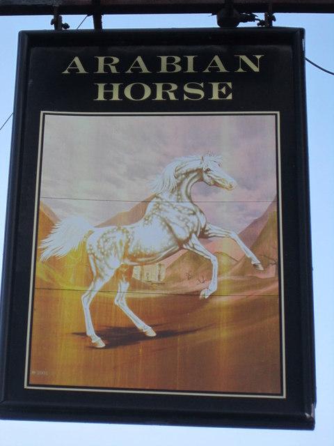 The Arabian Horse, Aberford