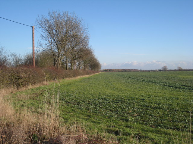 Fields north of Misson
