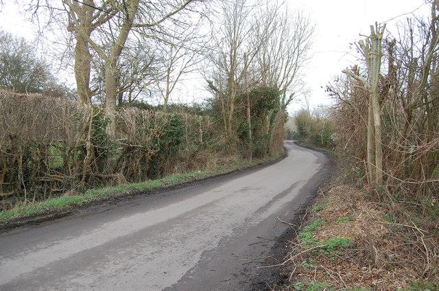 Lane to Rickney