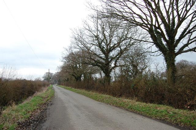 Sayerland Lane