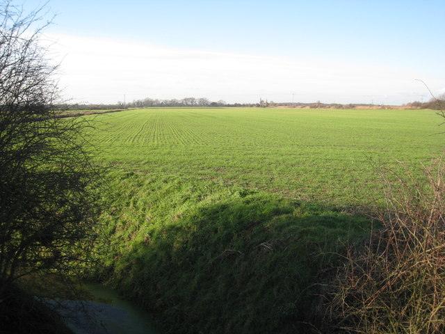 View near Newlands Farm