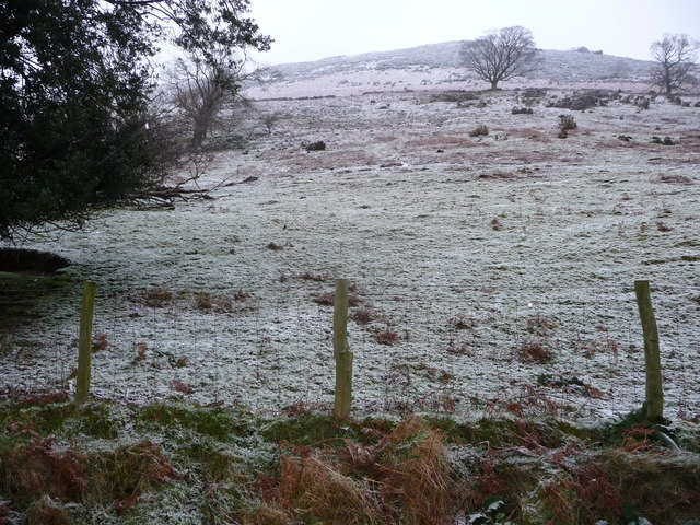Steep valley side pasture near Pistyll Rhaeadr